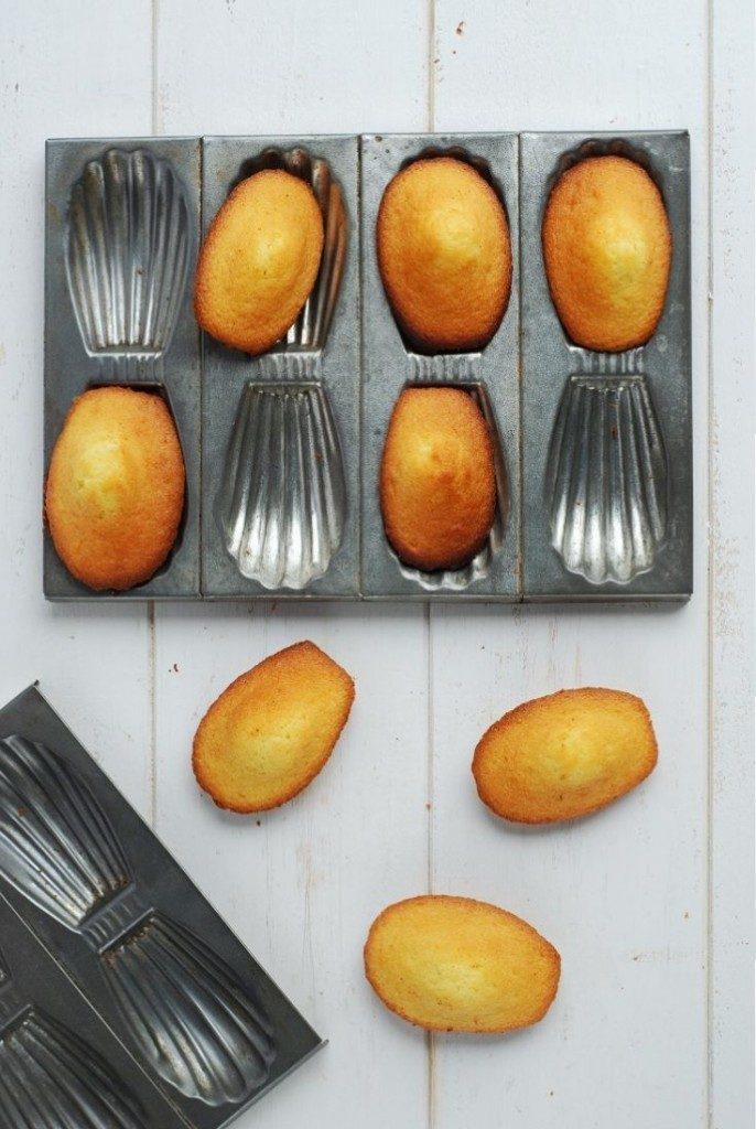 madeleines à bosse